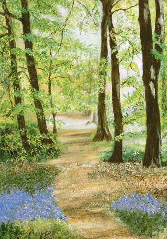 10 Greeting Cards - Shadows and Sunshine by Anne, Duchess of Norfolk CBE