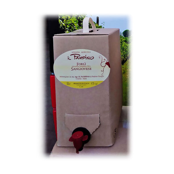 Vino in BAG - Sangiovese 5,0 Lt