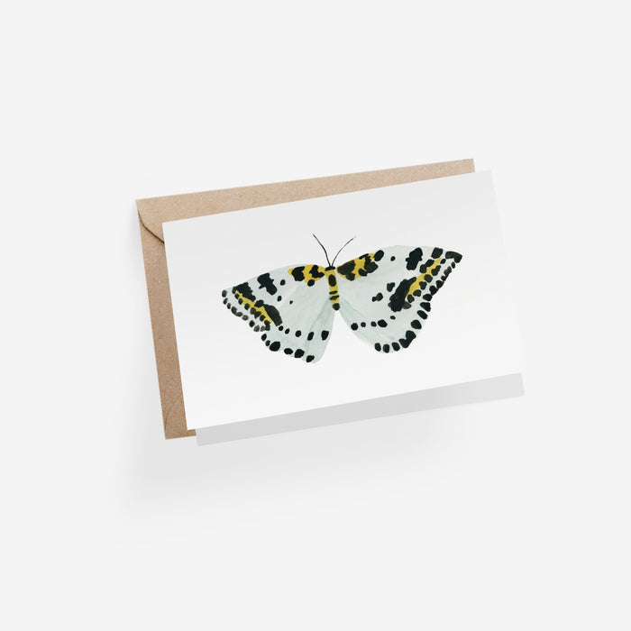 Papillon Blanc Folded Card