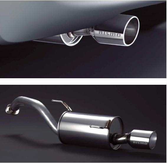 Sports Exhaust Cartuner/® 2/ x 60/ mm Stainless Steel Look