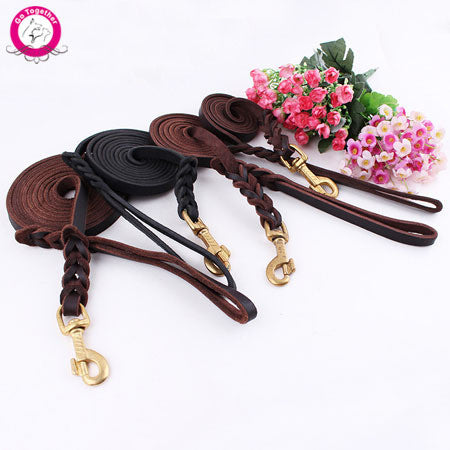High Quality Genuine Leather Pet Dog Leash Luxury Strong Puppy Collar Leash Lead For Large Dogs S/M/L/XL - Pupvision - 1