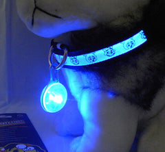 Pet Dog, Cat, Puppy LED Flashing Collar -Night Safety Light Pendant - Pupvision - 1