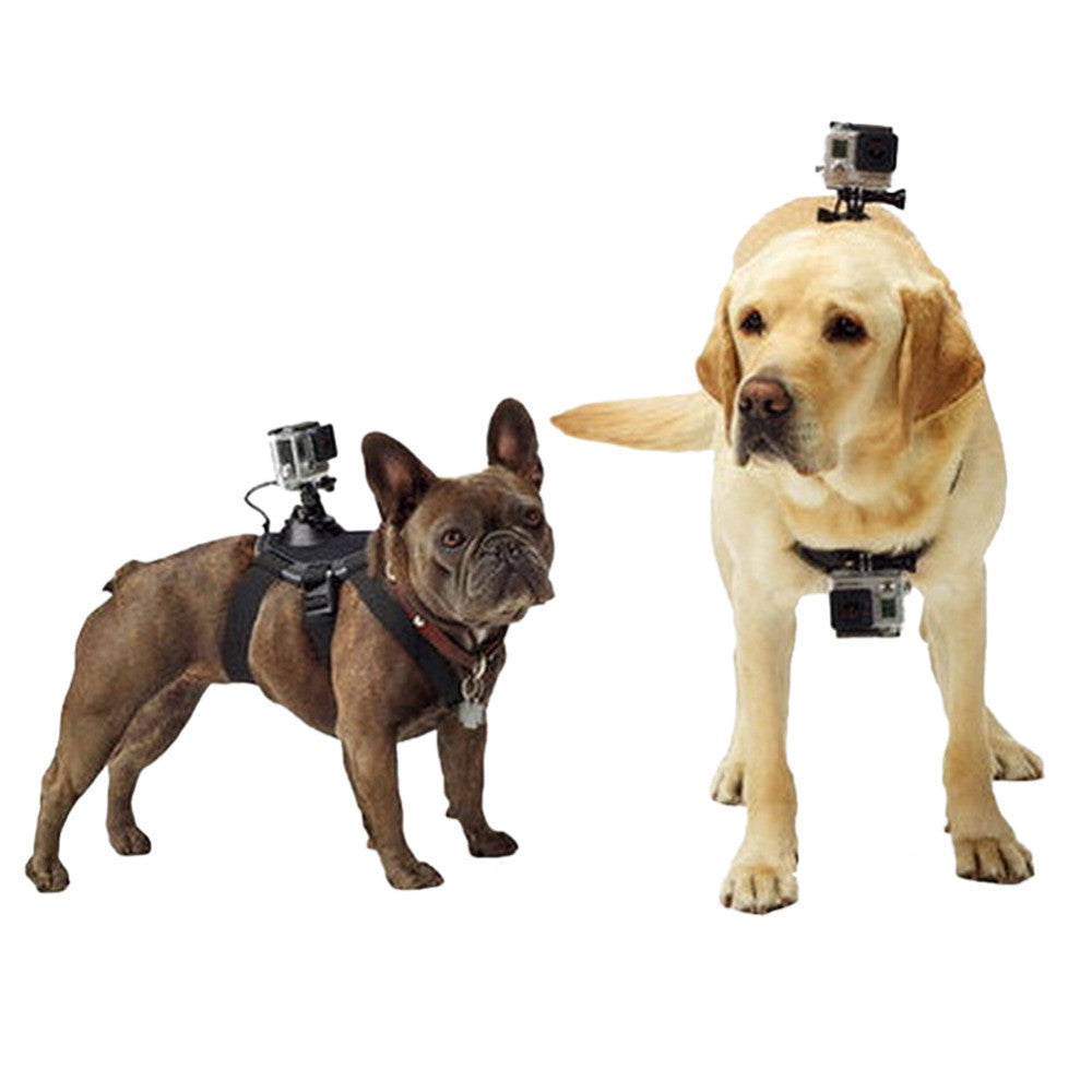 Tripods For GoPro Accessories Adjustable Dog Fetch Harness Chest Strap Belt Mount For Gopro Hero 4 3 SJ4000 Action Sport Camera - Pupvision - 1