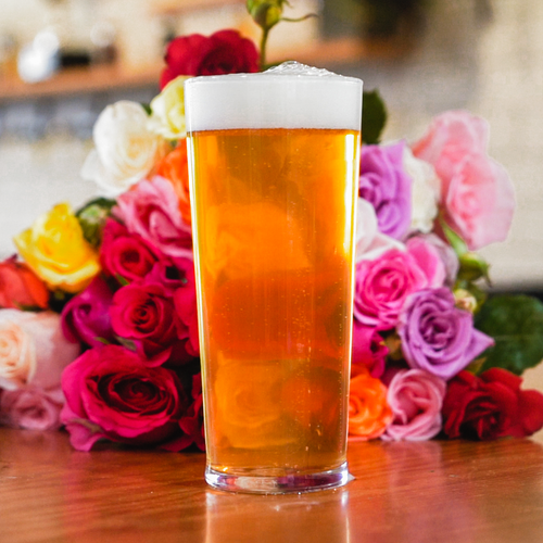 Love and Desire Ale - in partnership with the National Gallery of Australia