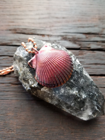 Rainbow Seashell Pendant