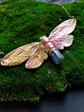 Cicada with Carborundum Vial