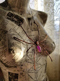 Orb Spider with Pink Rainbow Moonstone Coffin