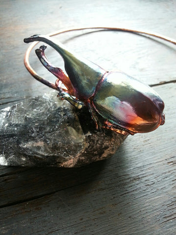 Rhinoceros Beetle and Kyanite Neck Loop