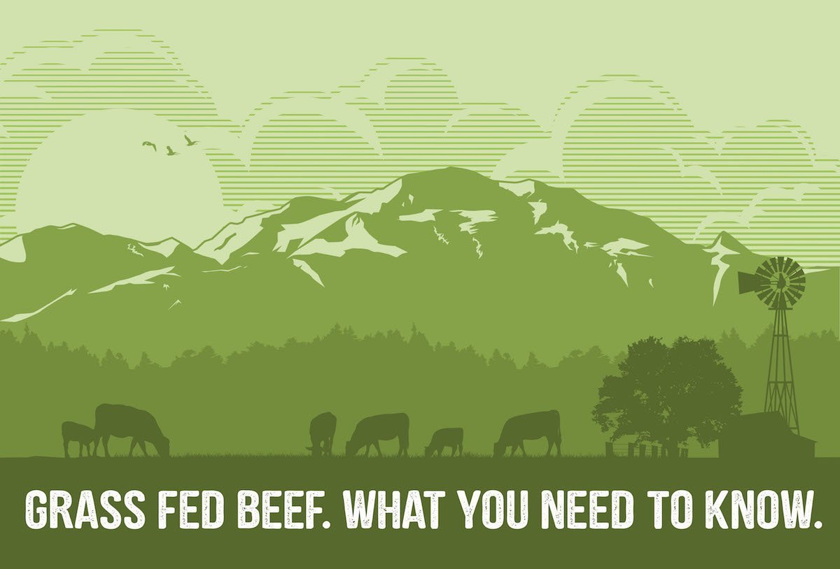 Grass Fed Beef | What You Need to Know