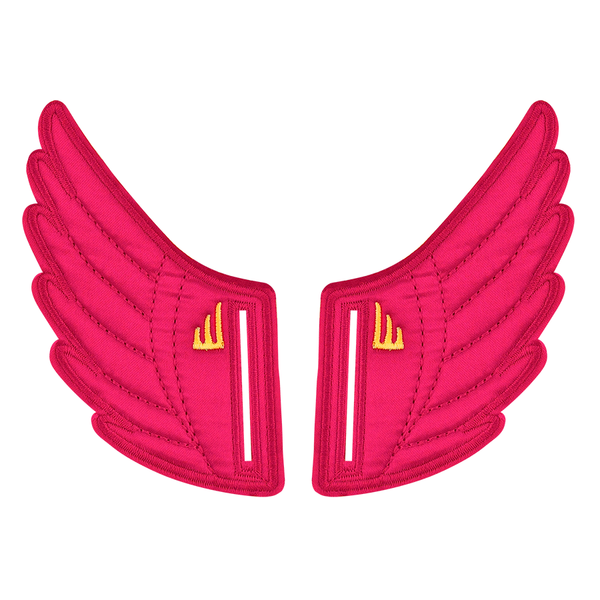 pink fuchsia Shwings shoe accessory