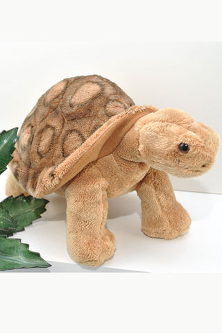 Brown plush desert tortoise