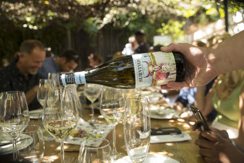 Survivor Chardonnay & MCC Launch