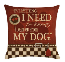 Everything I need to know... - pillow
