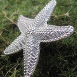starfish drawer knobs
