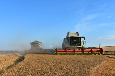 Combine harvester and demonstrator working on farmland.