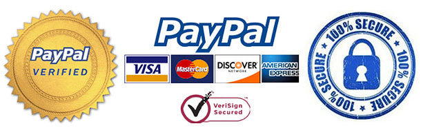 Paypal Payment secure system for online payments