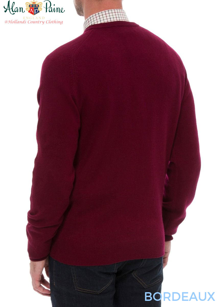 rear view Burford Men's Lambswool V Neck Sweater - Classic Fit