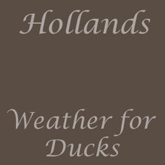 weather for ducks colour swatch
