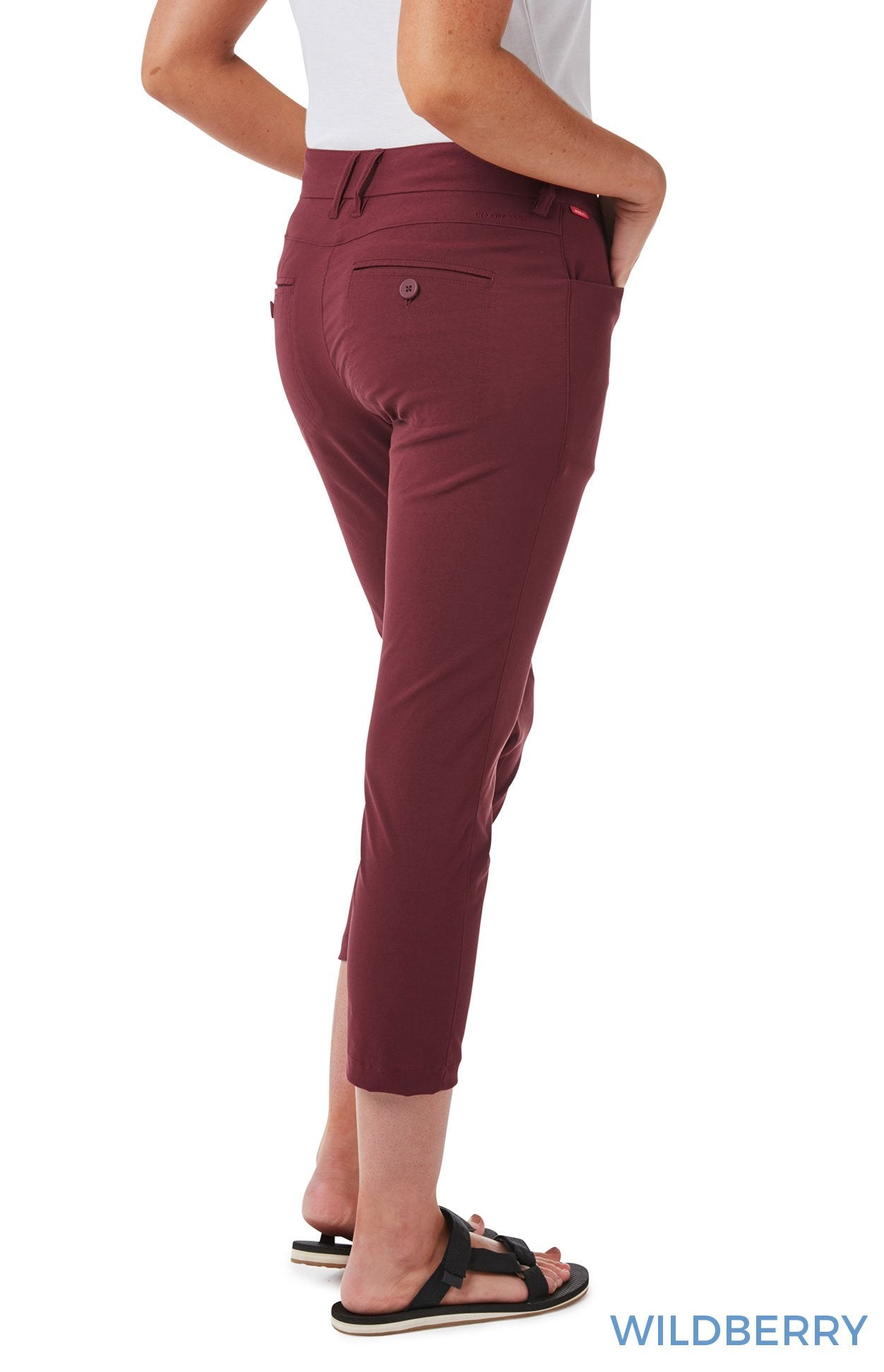 Rear Wildberry Ladies Clara NosiLife Crop Pants by Craghoppers