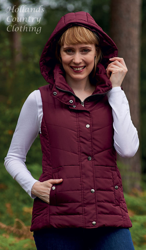 worn with the hood up Champion Danehill Ladies Hooded Gilet in iwne