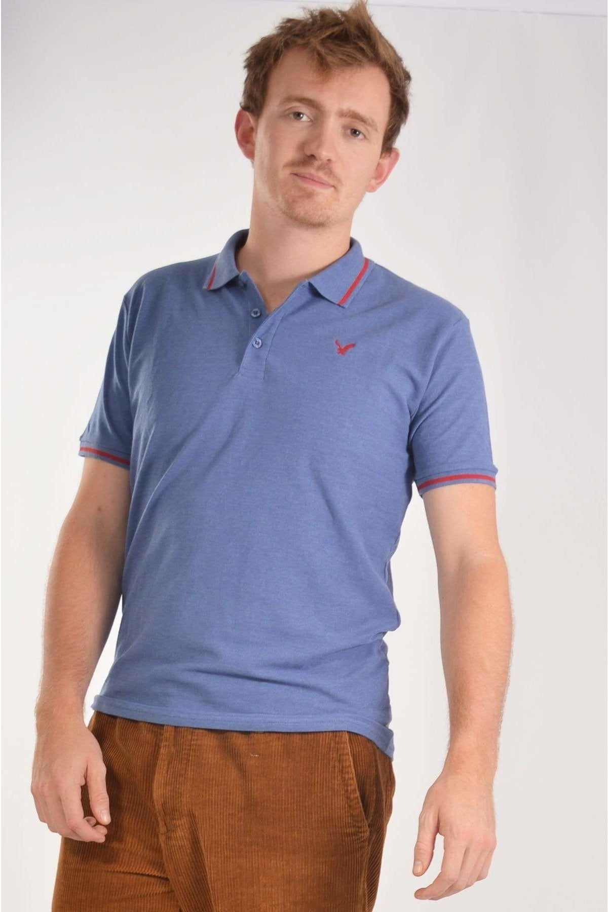 American Eagle Mens Tipped Collar Polo Shirt | M / Blue Secret Label