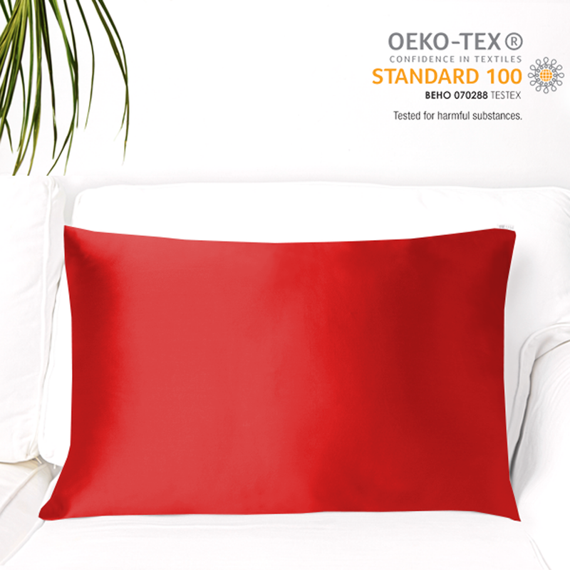 Natural Mulberry Silk Pillowcase (19 Momme), Queen Size - MYK Silk