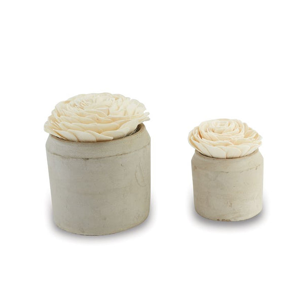Mudpie : Wood Flower & Concrete Pot