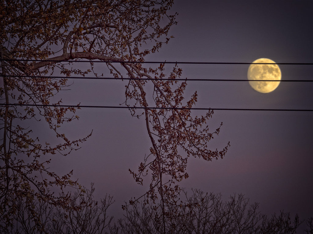 Moon On Wires
