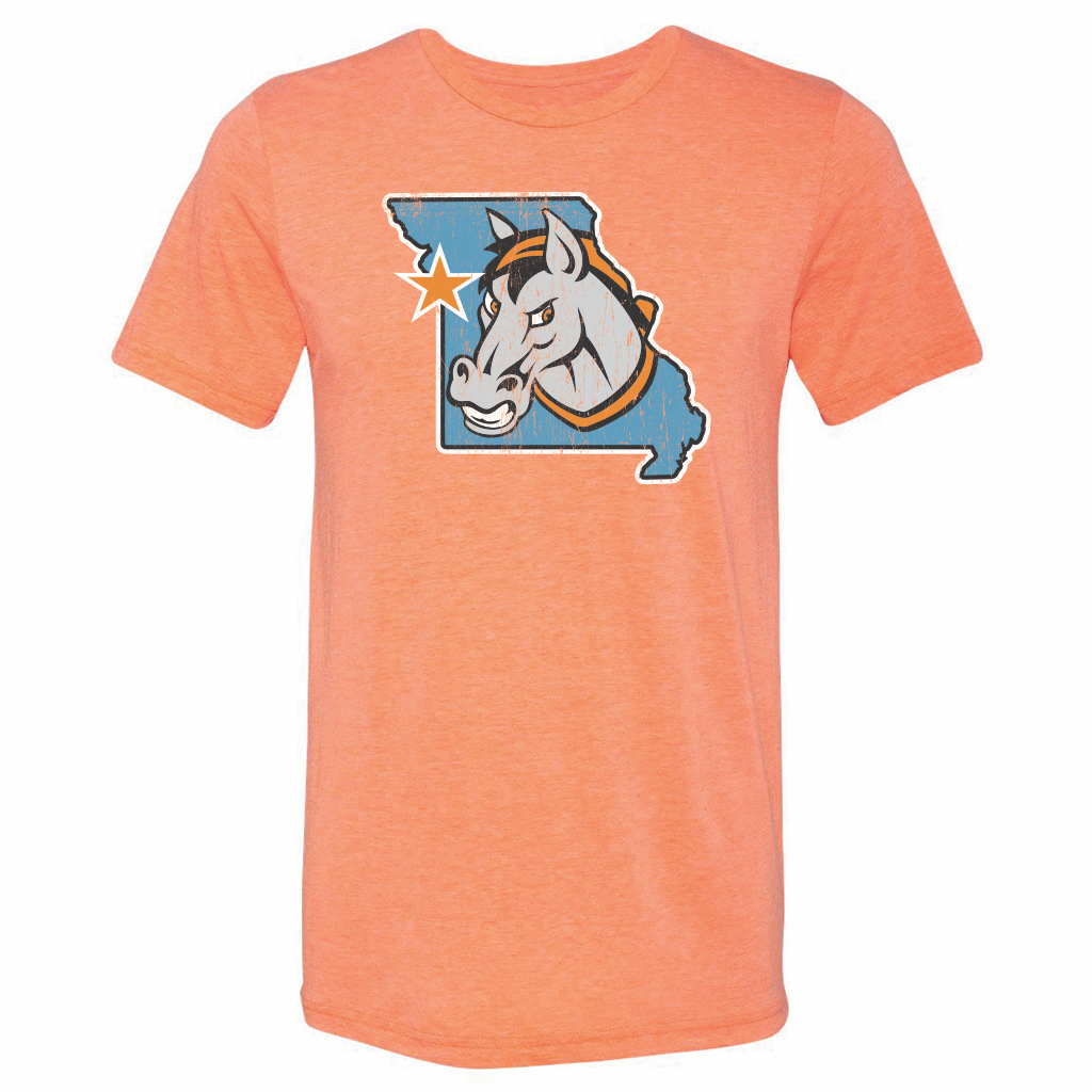Kansas City Mavericks Men's State Tee