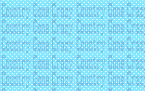 PD003-Country Gone Crazy-Country Gone Crazy