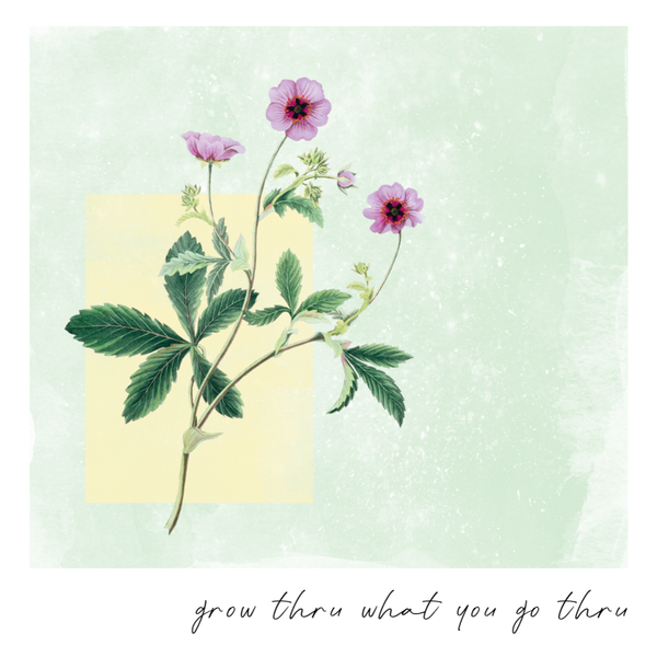 Grow Through - Coming Soon