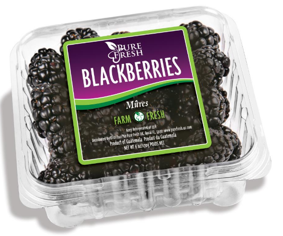 Carton Blackberries 1lb