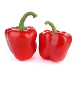 2 Peppers Bell Red - State Shops NY