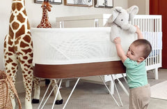 10 Adorable Elephant Nursery Ideas