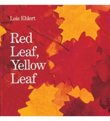 red-leaf-yellow-leaf-book