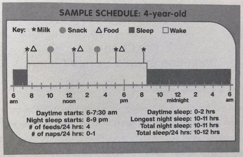 How Much Should A Toddler Sleep Happiest Baby