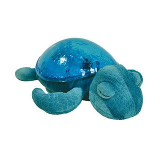 Tranquil Turtle - AQUA - cloud b - eBeanstalk
