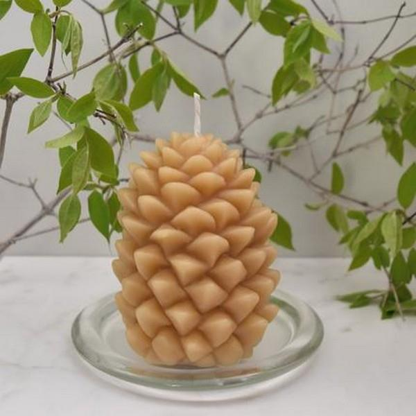 Pine Cone Beeswax Candle | boogie + birdie
