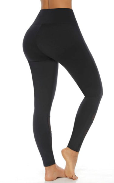 Mesh Lines Leggings 9039