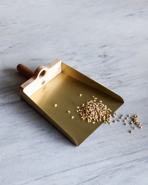 dustpan elegant brass and wood Lostine