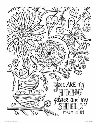 """Color the Promises of God"" - Adult Coloring Book"