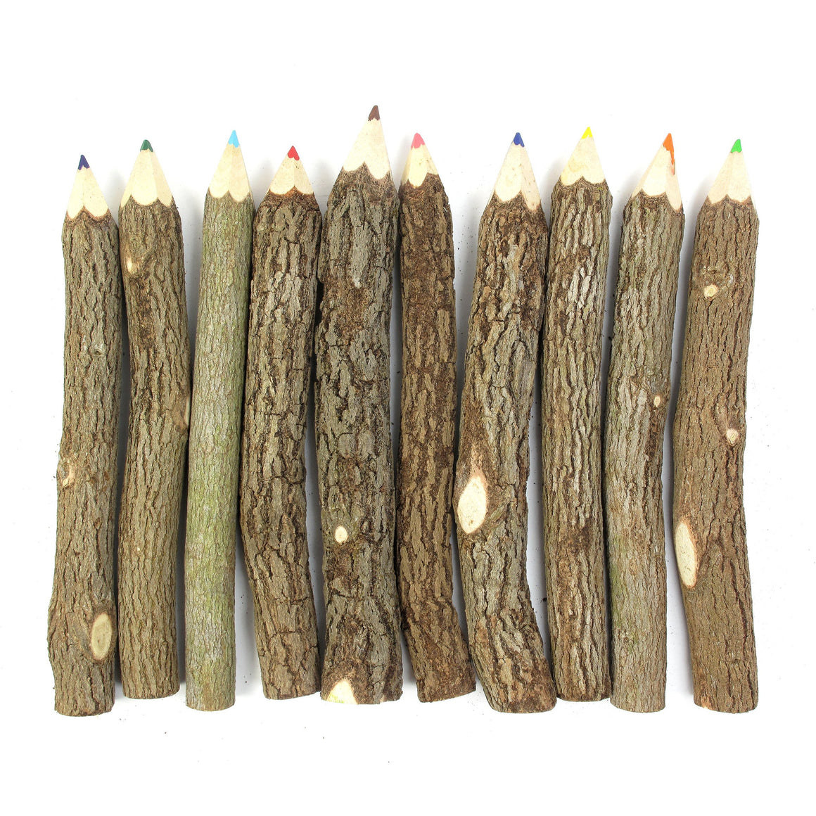 Branch & Twig Assorted Colored Pencils 10 pcs