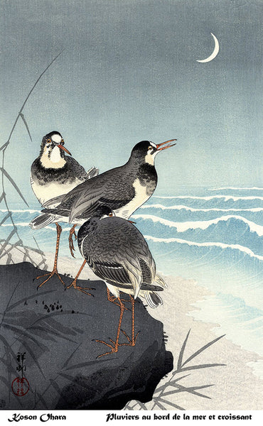 Three Plovers by Ohara Koson. Archival giclee print on 55 gsm Washi - Unryu paper.
