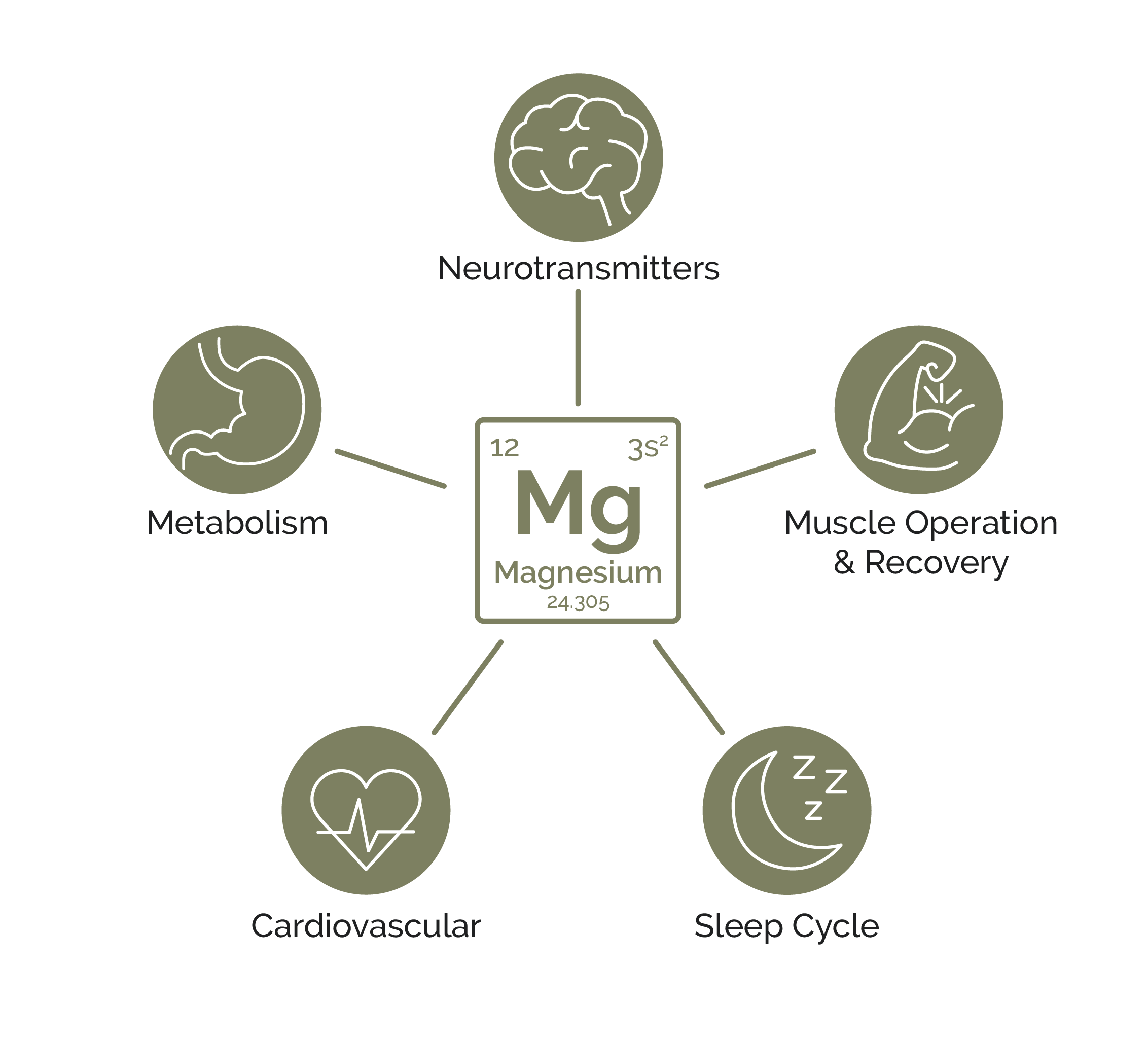 Magnesium affects these internal systems: cardiovascular, muscle operation & recovery, metabolism, neurotransmitters, and sleep cycle