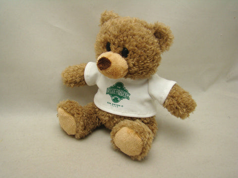 Cuddly River Walk Teddy Bear - 8 inches with logo on foot OR t-shirt