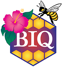 Big Island Queens Logo