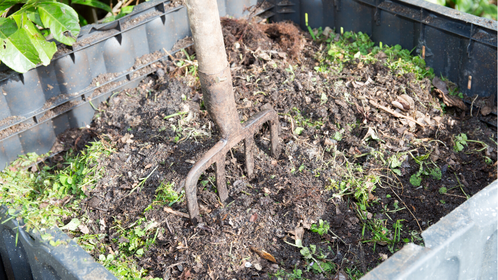 4 Common Landscape Cleanup Tips