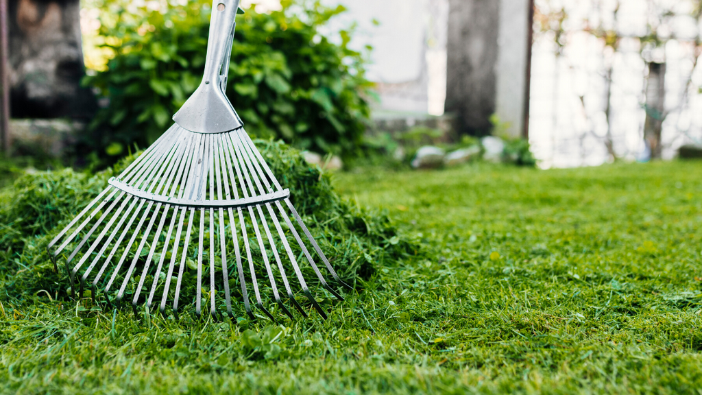 5 Ways to Prepare Your Yard for Spring