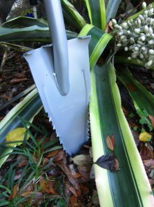 Root Assassin Shovel
