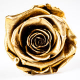 'Carré Parfait' Velvet Square Box With Drawer LARGE - Preserved Roses